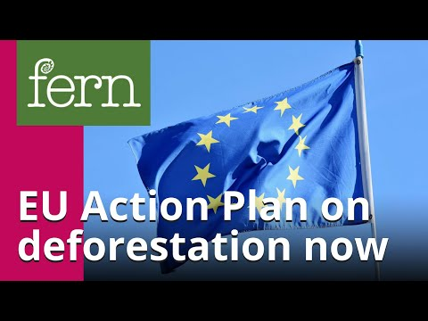 We need an EU Action Plan on deforestation now!
