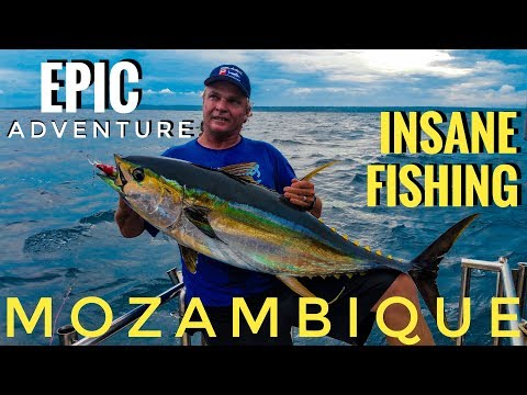 Fishing The Primeiras Reefs - INSANE Experience & EPIC Adventure