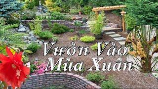Tiểu cảnh khu vườn nhà mình vào mùa xuân - Side Yard Garden - Taylor Recipes | Cuộc Sống Mỹ