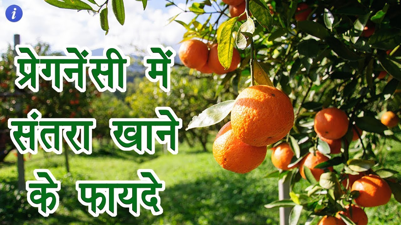 Benefits Of Orange During Pregnancy In Hindi By Ishan Youtube