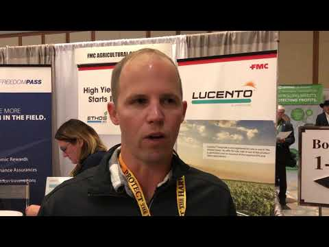 Leaf Spot is FMC Disease of the Year | AgWired