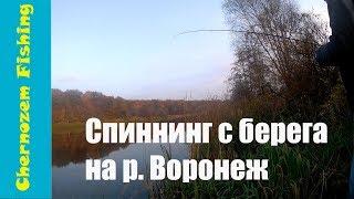 Почему долго не выходили видео. Рыбалка на реке Воронеж в октябре.