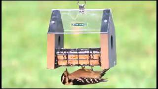 Duncraft's Sheltered Stained Suet Feeder.flv