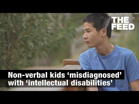 The Silent Treatment: Non-verbal Children 'misdiagnosed' With 'intellectual Disabilities'