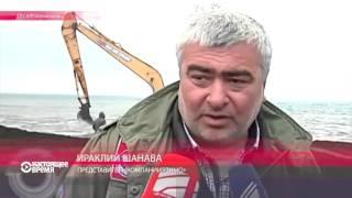 Миллиардер Бидзина Иванишвили пересаживает деревья со всей Грузии в свой дендропарк
