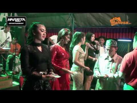 Harista Entertainment - Bunga Bunga Rindu