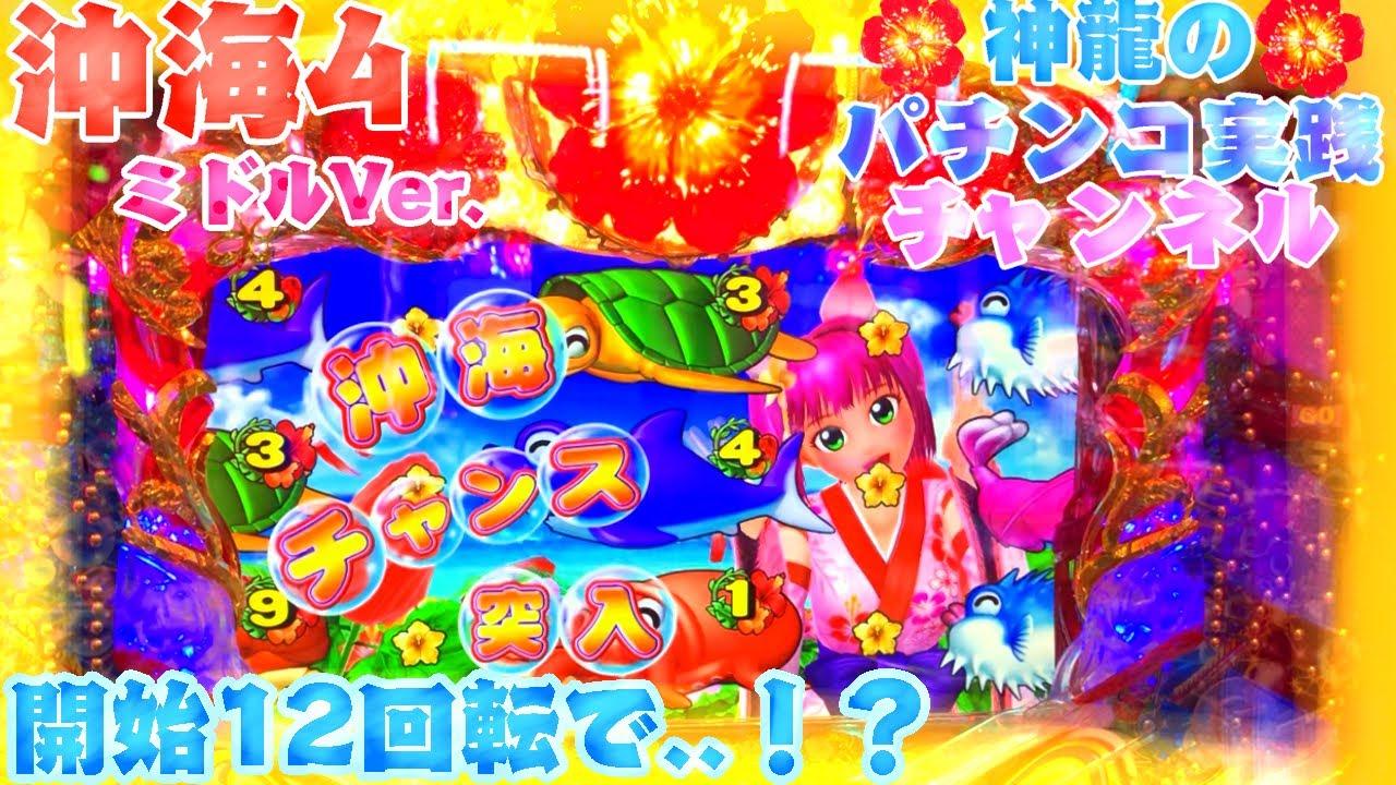 4 セグ 海 スーパー in 物語 沖縄 スーパー海物語IN沖縄4 MTC・MTBZ(1/319)