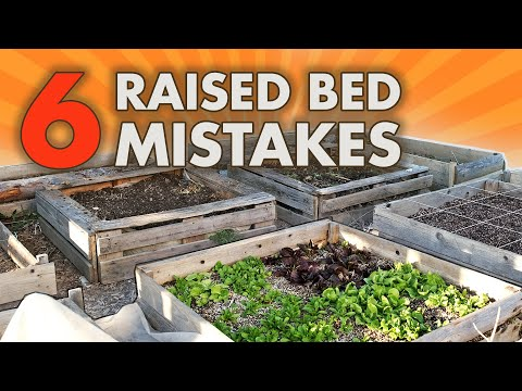 Common RAISED GARDEN BED MISTAKES You're Making & HOW TO FIX THEM With Square Foot Gardening