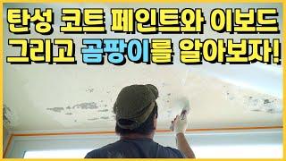 샷시교체 창호 유리 탄성 코트 페인트와 이보드 샷시 결…