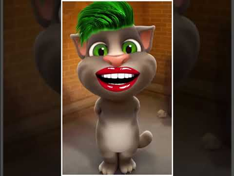 Talking Tom Says Yes