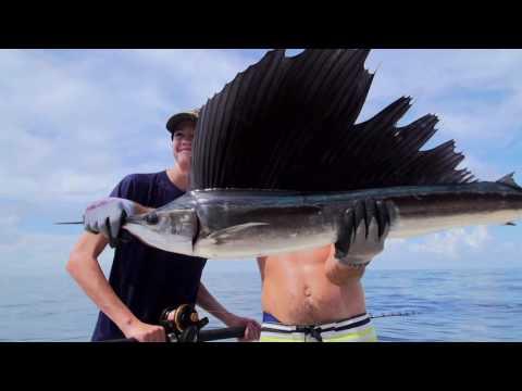 Fishing Canaveral Seashore | Sea Leveler Charters