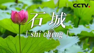 《中国影像方志》 第719集 江西石城篇  CCTV科教 - YouTube