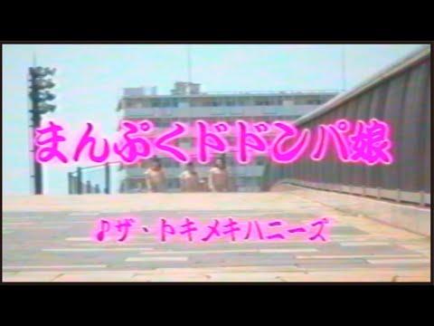 ザ・トキメキハニーズ『まんぷくドドンパ娘』Official MV