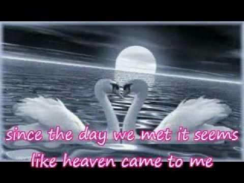i love you by sofie (lyrics)
