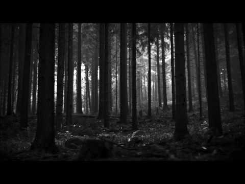 My Haunting Dread - Gutter Nest (Lyrics) mp3
