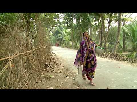 Amazing Water Purification Treatment Plant Bangladesh