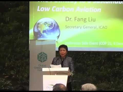 High Level Session The Pathway to a Sustainable Low Carbon and Climate Resilient Economy