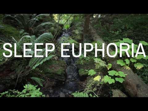 SLEEP EUPHORIA (with music) A guided meditation to help you fall deeply asleep