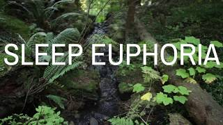SLEEP EUPHORIA (with music) A guided meditation to help you fall deeply asleep