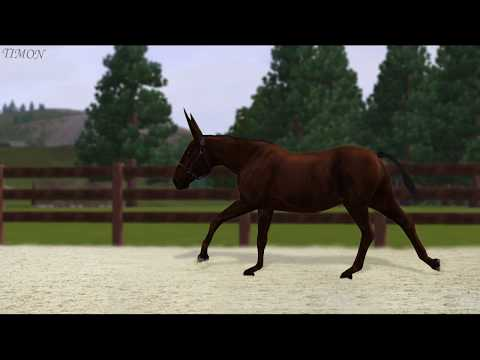 Обрабатывание лошади в Photoshop CS6 I Sims 3 Horse