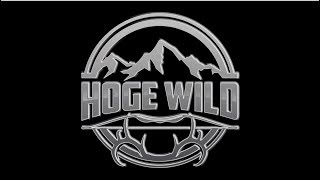 HOGE WILD Intro video