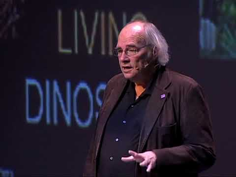 How to find dinosaurs? Jack Horner - CDI 2011