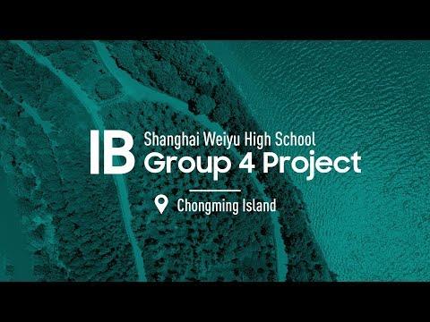 IB Group 4 Project @Chongming Island - Shanghai Weiyu High School