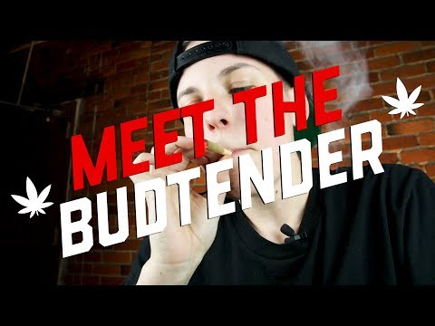 Meet The Budtender - Kat