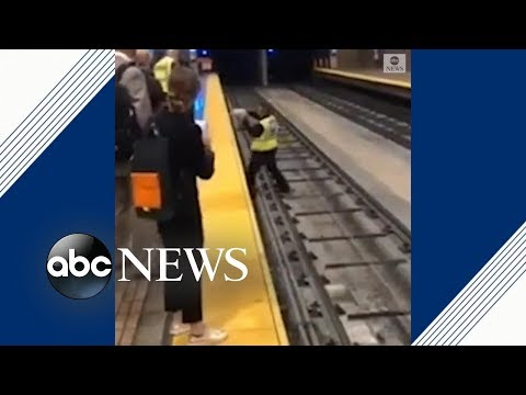 Puppy on tracks delays trains in San Francisco