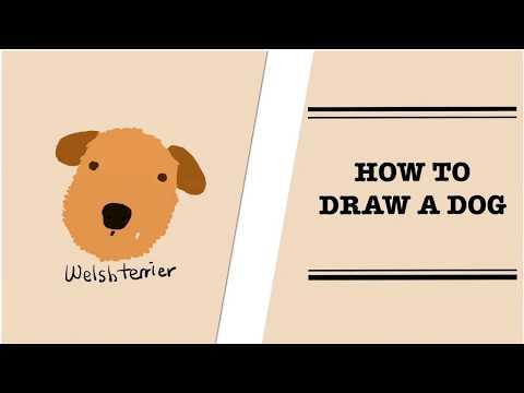 How to draw a dog (Welsh Terrier) 강아지 웰시테리어 그리기
