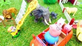 Игры и игрушки: СВИНКА ПЕППА В ЗООПАРКЕ. Видео с игрушками из мультфильмов для детей.(Развивающее видео для детей с игрушками из мультфильма Свинка Пеппа. Сегодня Пеппа вместе с Сьюзи и Папой..., 2016-09-16T03:58:58.000Z)