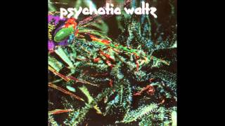 Watch Psychotic Waltz Locked Down video