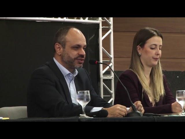 FNE 2019 - Painel 03 - Futuro da Industria Eólica e infra-estrutura de transmissão no Brasil