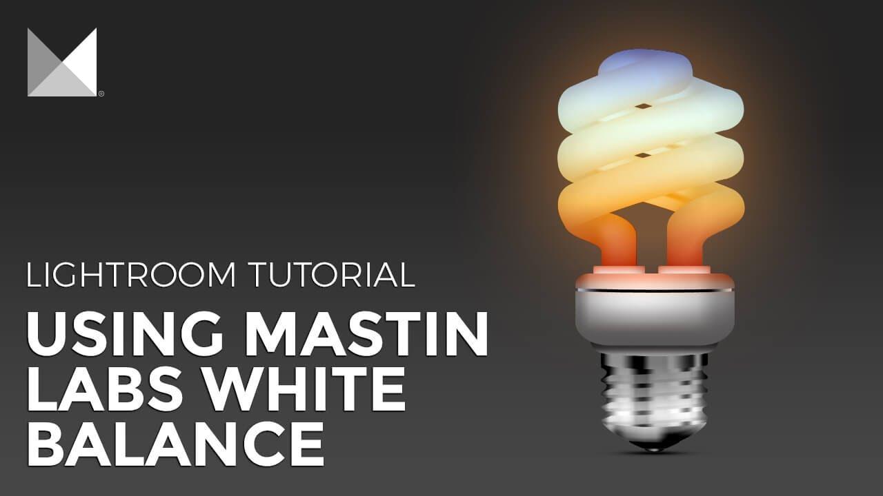 How To Use Mastin Labs Lightroom Presets White Balance Options