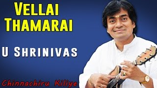 Vellai Thamarai | U Shrinivas (Album: Chinnanchiru Kiliye)