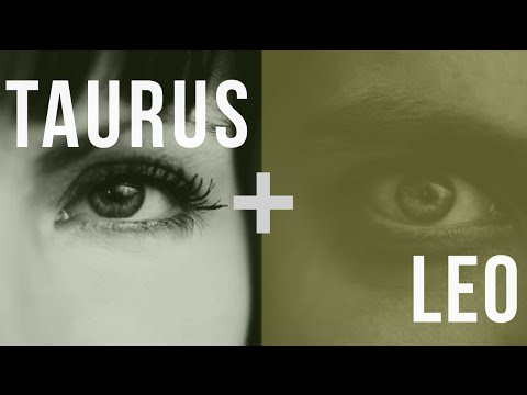 How a Taurus and Leo Can Have a Successful Relationship