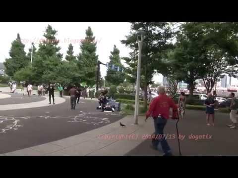 Japan Trip 2014 Tokyo Shibuya  Stroll in the Yoyogi-park. Entrance of Harajuku side