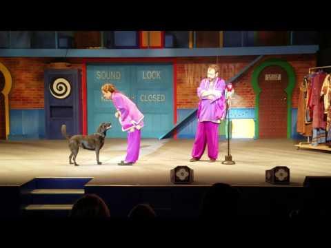 Busch Gardens Animal Show