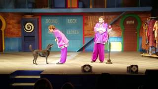 Busch Gardens Animal Show