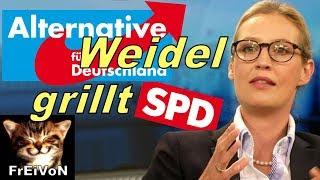 AfD * Alice WEIDEL GRILLT SPD * Oppermann * Dieselverbot Feinstaubirrsinn Grenzwerte