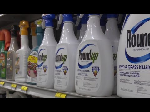 Monsanto's weedkiller deemed a 'substantial factor' in man's cancer