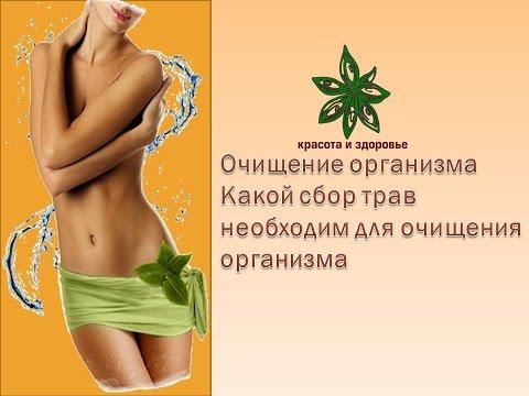Очищение организма -