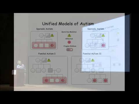 Considering the Genetics of Cognitive Function Through the Prism of Autism