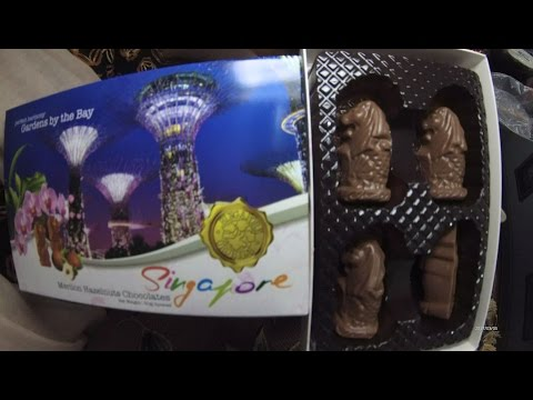 Miss Mary Culinary Food Review 273 Singapore Merlion Chocolate Made in Malaysia 6014