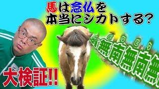 【あばれる君の実写版マジで!!まじめくん!】マジ語まじめにやってみた「馬の耳に念仏」