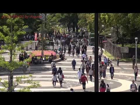 Japan Trip 2013 Tokyo Yoyogi Park holiday in Shibuya 584