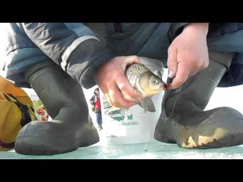 рыбалка у петровича харьковская область