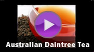 Australian Daintree Tea