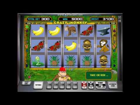 играть онлайн бесплатно обезьяны автомат