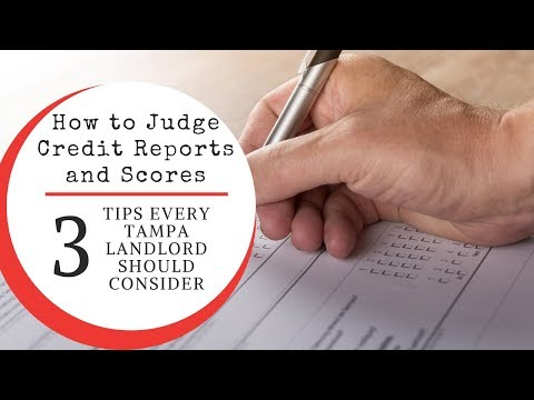 How to Judge Credit Reports and Scores – 3 Tips Every Tampa Landlord Should Consider